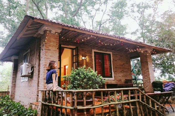 the forest homestay